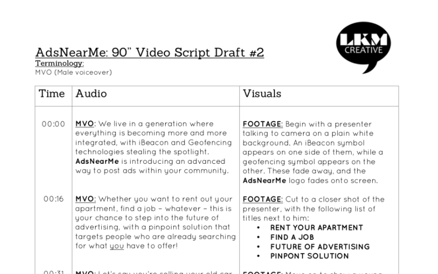 Professional video script