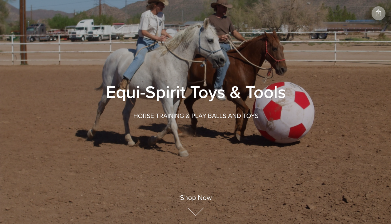 Equi-Spirit Toys and Tools