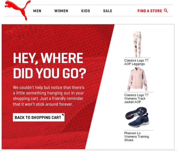 Abandoned cart email puma