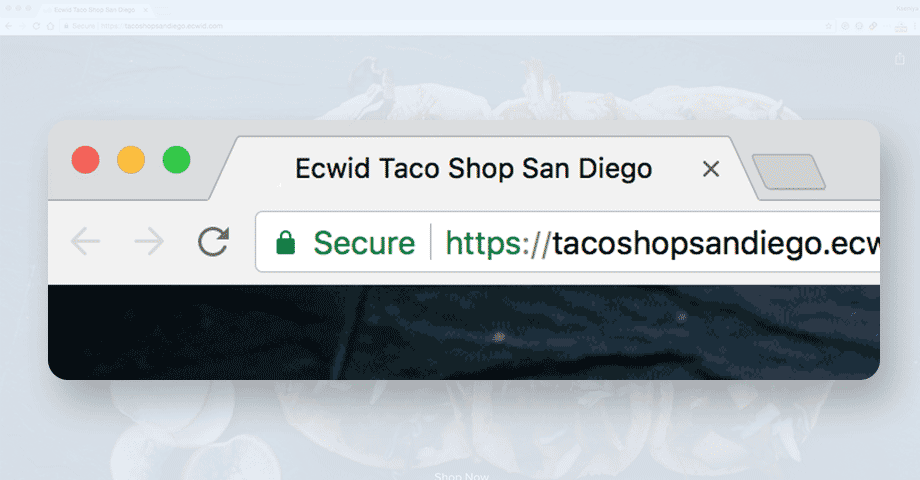 Ecwid works on HTTPS