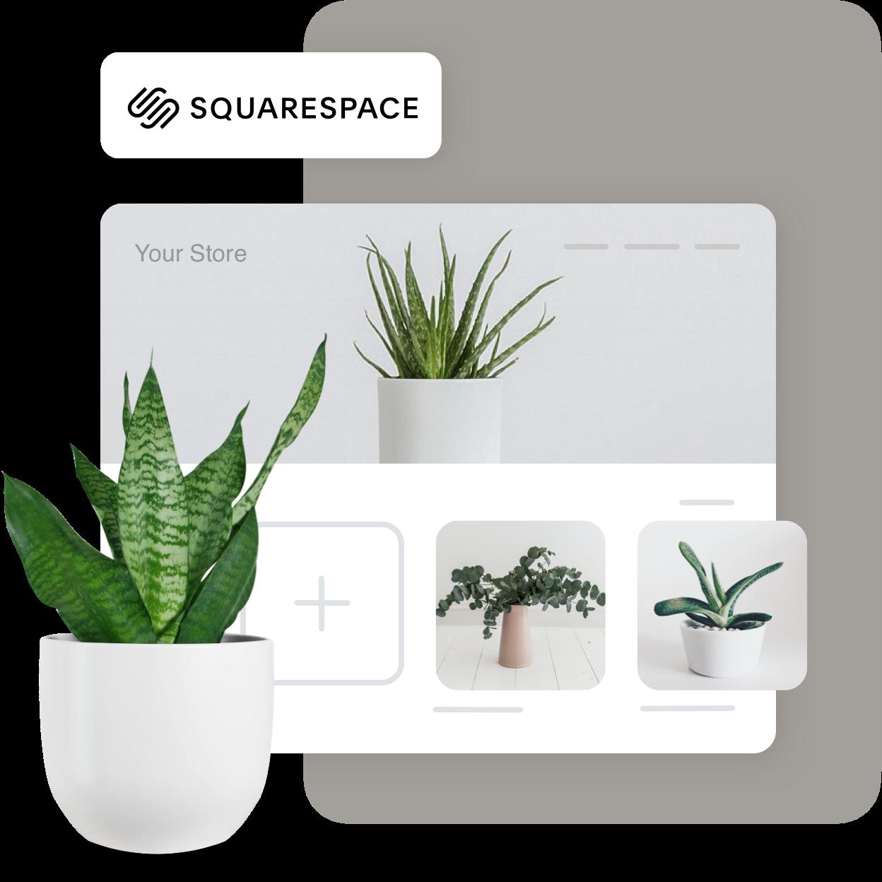 Squarespace_Main-1619683726-1619768429