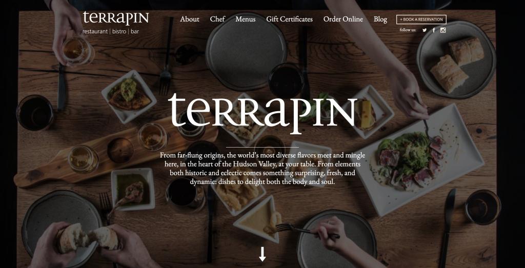 Terrapin Ecwid Store
