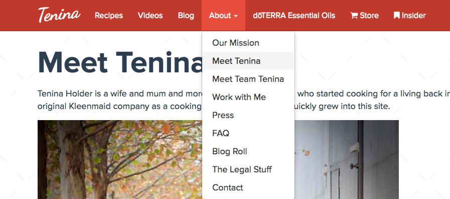 Tenina's About Us Section