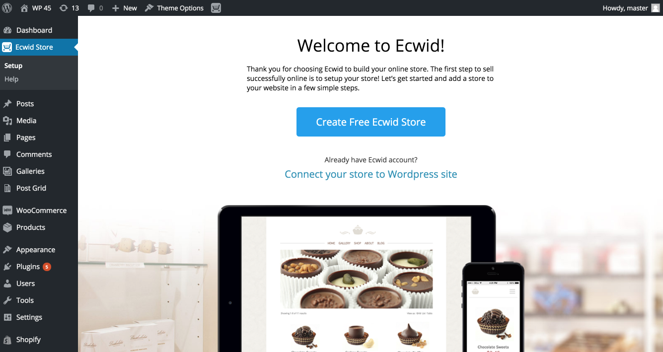 The look of the Ecwid plugin