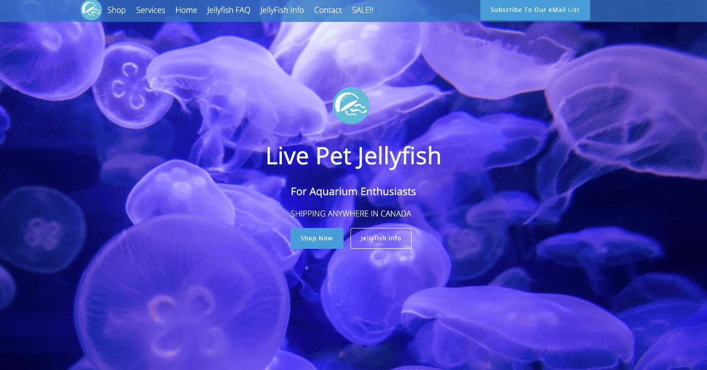jellyfishaquarium Ecwid store-min