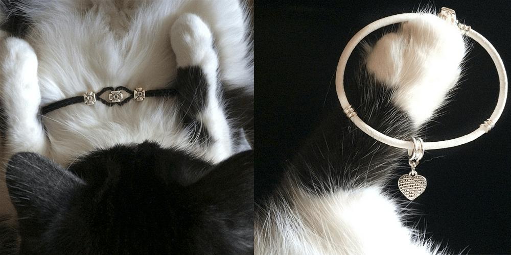 Lang cats_2 (1)