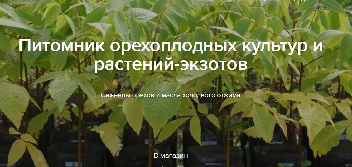 Питомник орехоплодных культур и растений-экзотов