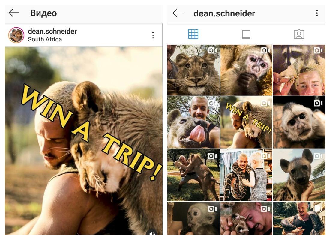 Подписчики @dean.schneider не пропустят видео с розыгрышем поездки