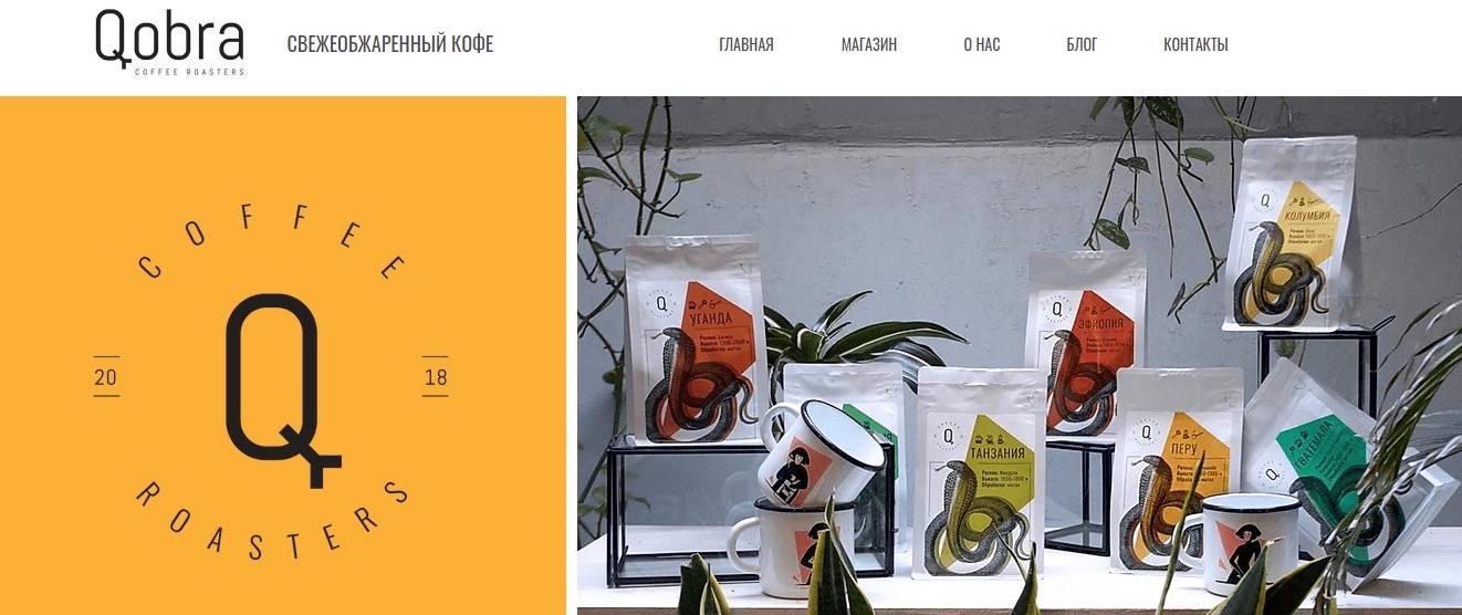 Магазин Qobra: Эквид установлен на Wix
