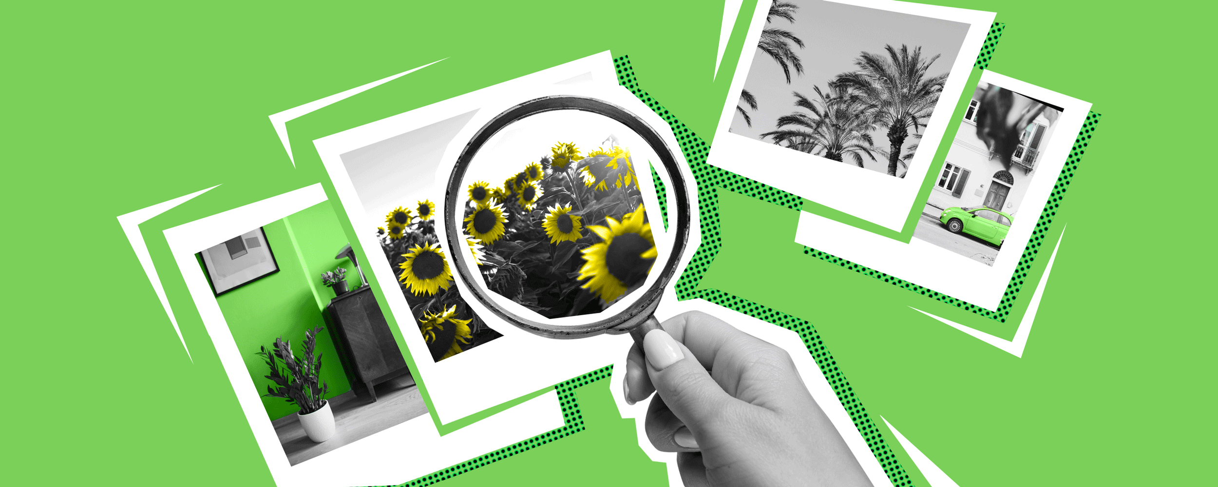 Dónde Encontrar Imágenes Gratis En La Web- Fotos De Stock, Bases De Datos Y Boletines Informativos